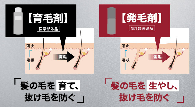 育毛剤と発毛剤